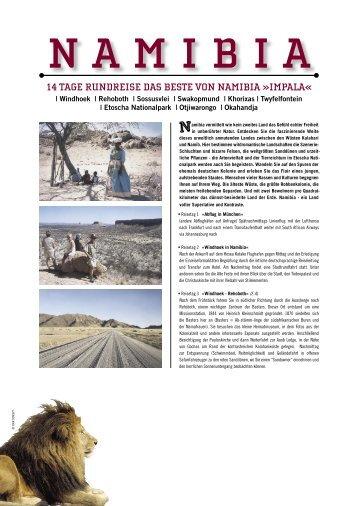 01 namibia impala