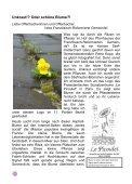 Gemeindebrief Juni/Juli 2013 - Franzoesisch-Reformierte Gemeinde ... - Page 2