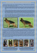 GSD_Long_Stock_Coat_Lecture_QNReview_2013 - German ... - Page 2
