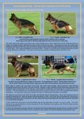GSD_Long_Stock_Coat_Lecture_QNReview_2013 - German ... - Page 3