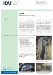Flibach - IBU - Institut für Bau und Umwelt - HSR Hochschule für ...
