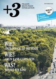 pdf Version - Magdalena Schaffrin