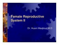 Female Reproductive System II
