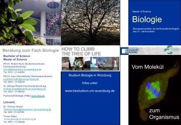 Flyer Master - Studium Biologie