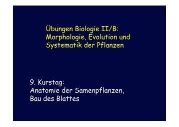 Übungen Biologie II/B: Morphologie, Evolution und Systematik der ...