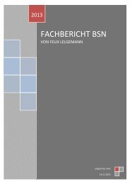FACHBERICHT BSN - WordPress.com