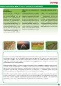 gama de semeadoras combinadas - Maschio Gaspardo - Page 7