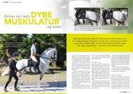 Aktiver din hests DYBE og motor - Claus Toftgaard Horse Therapy