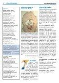Jugendtreffen in Rom - Pfarrei Hochdorf - Page 4