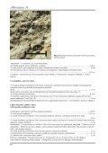 Albertiana 31 - Page 4