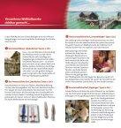 in die Stein- und Bronzezeit - Pfahlbauten Unteruhldingen - Seite 4
