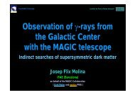 MAGIC observations of the GC region and its Dark Matter ...
