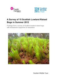 A Survey of 15 Scottish Lowland Raised Bogs in Summer 2012