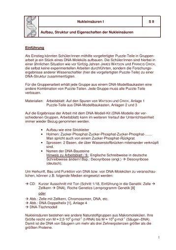 Großzügig Arbeitsblatt 1 DNA Struktur Bilder - Arbeitsblätter für ...
