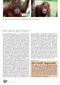 Dem Tode geweiht - BOS Schweiz - Page 3