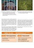 Dem Tode geweiht - BOS Schweiz - Page 7