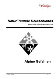 NaturFreunde Deutschlands Alpine Gefahren - Schneesportteam