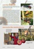Insektenhotels Die - Naturschutzbund - Page 2