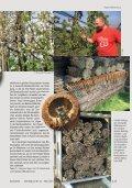 Insektenhotels Die - Naturschutzbund - Page 4