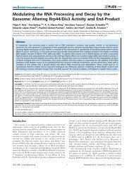 Altering Rrp44/Dis3 Activity and End-Product - Centro de Biología ...