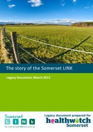 Download the Somerset LINk Legacy Document here - Local ...