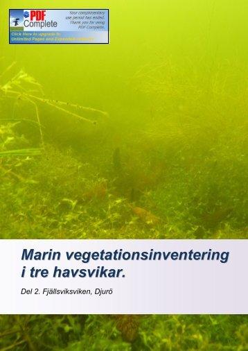 Marin vegetationsinventering i tre havsvikar. - Balticsea 2020