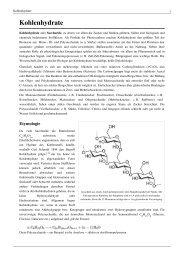 Kohlenhydrate - Bettina Ehrling