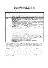 pdf-Datei - Die Gattung Rubus in Schleswig-Holstein