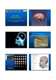 Pain, Brain, Placebo & Nocebo - Manuellterapi