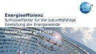 Energieeffizienz. Schlüsselfaktor für die ... - Renner Institut
