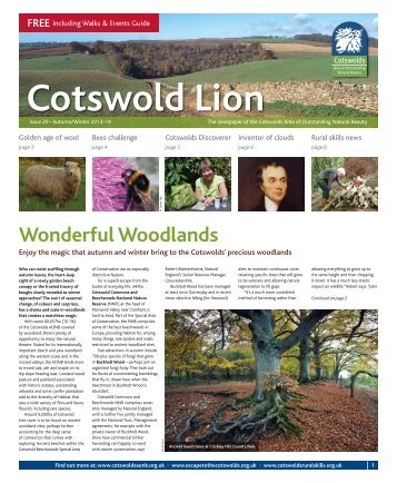 Autumn/Winter Cotswold Lion - Cotswolds Area of Outstanding ...