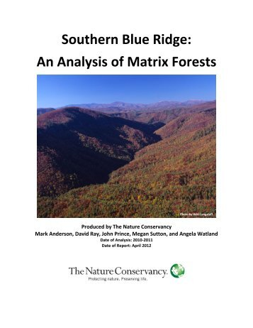 Southern Blue Ridge: An Analysis of Matrix Forests - Conservation ...
