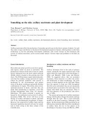 Something on the side: axillary meristems and plant ... - Springer