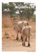 trans-geo Westafrika 09 - Seite 4