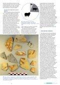 GROTE REDE 35.indd - Vlaams Instituut voor de Zee - Page 5
