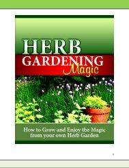 0 - Herb Garden Magic