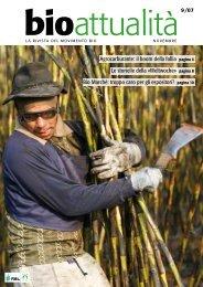 Agrocarburante: il boom della follia pagina 4 Le ... - bioattualita.ch