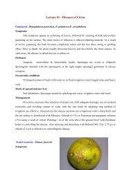 Lecture 01 - Diseases of Citrus - TNAU