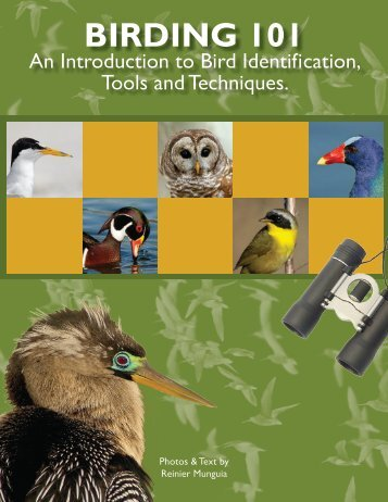 Download the Birding 101 Booklet - Lake Region Audubon Society