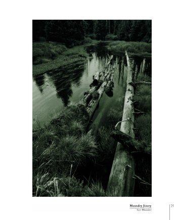 Meandry Jizery - knihy 555