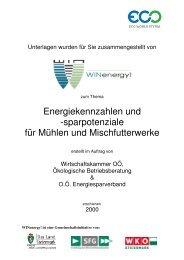 Energiekennzahlen und Sparpotenziale für Mühlen und ... - WIN