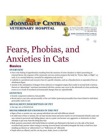 Fears, Phobias, and Anxieties in Cats