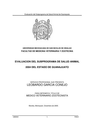 LEOBARDO GARCIA CONEJO - Biblioteca Virtual - Universidad ...