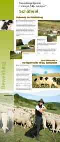 Wanderausstellung - Themen - Naturschutzgroßprojekt Thüringer ... - Seite 4