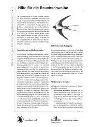 Hilfe für die Rauchschwalbe - Walkringen