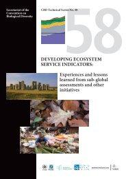 DevelopiNg eCoSySTem ServiCe iNDiCaTorS ... - BIP Indicators