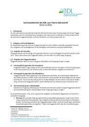 Sachstandsbericht des BDL zum Thema Kabinenluft