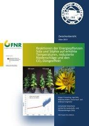 Reaktionen alter Getreidesorten auf erhöhte CO2-Konzentrationen