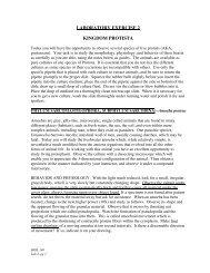 LABORATORY EXERCISE 2 KINGDOM PROTISTA