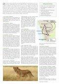 Namibia 2008 - Seite 2